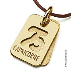 Pendentif SIGNS Capricorne (Or Jaune)